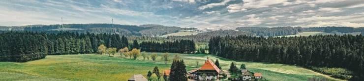 Пейзажи Шварцвальда