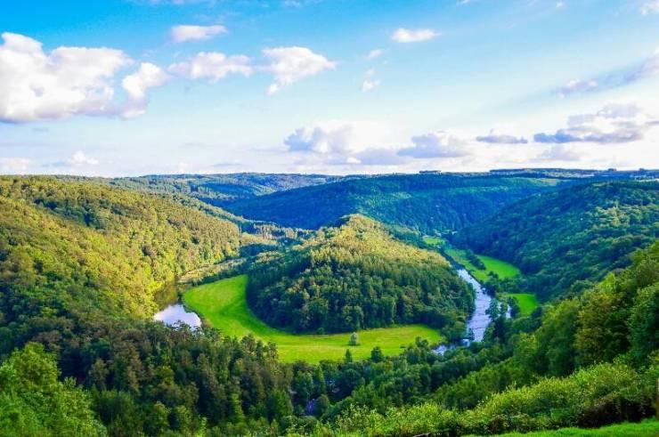 Арденнские леса